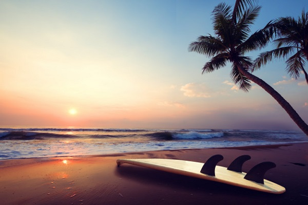 silhouette-surfboard-on-tropical-beach-at-sunset-in-summer-landscape-of-summer-beach-and-palm-tree-at-sunset-vintage-color-tone_1484-984